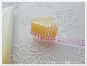 【アト美】歯ブラシ・歯磨き粉DSC02804