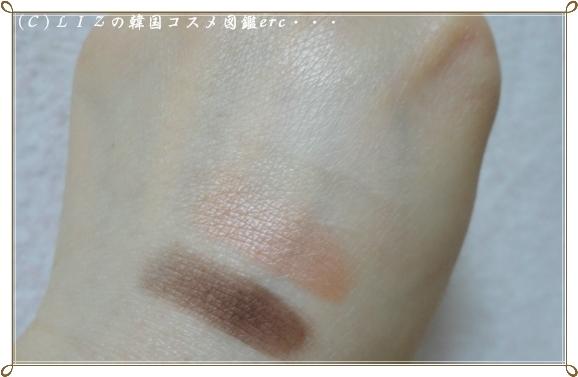 【クリオ】アートシャドーDSC03329