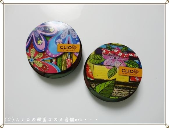 【クリオ】アートシャドーDSC03344