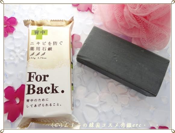 For Back DSC00520