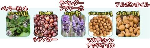 クッキー&ハンドクリーム ミント成分