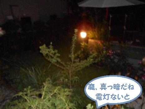 DSCN5703.jpg
