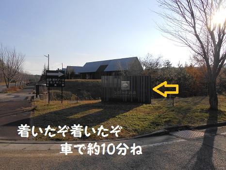 DSCN7205.jpg