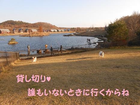 DSCN7222.jpg