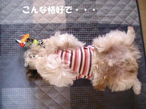 PIC_1424.jpg