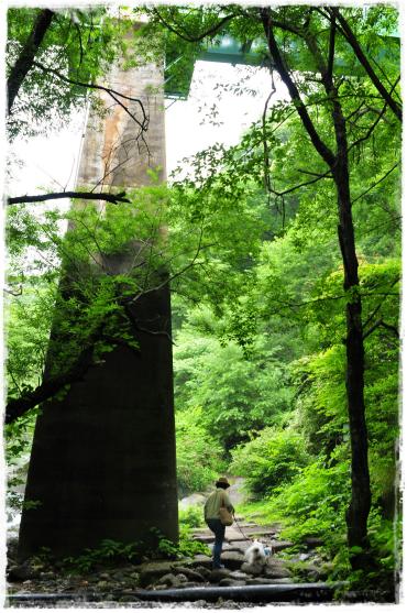 土竜の滝1