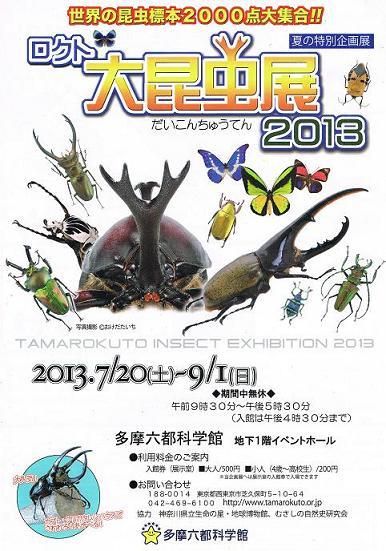 六都昆虫展2013