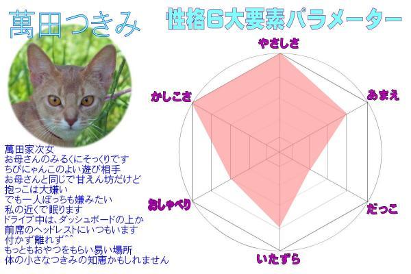 #44萬田パラメーター(6)