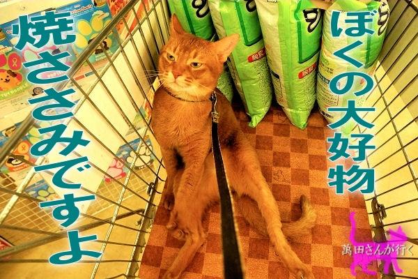 #60りんシャンプーを買いに行く(6)