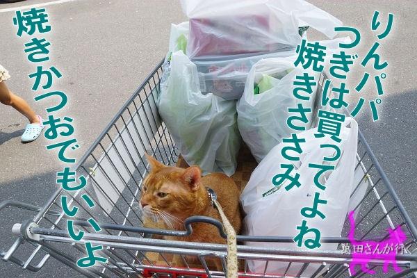 #60りんシャンプーを買いに行く(8)