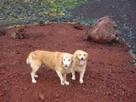富士山宝永火口を制する2006.9.19