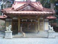 須山口登山歩道1-2011.3.26