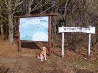 水ヶ塚公園~幕岩2011.11.27