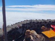 富士山頂を目指せ!⑤