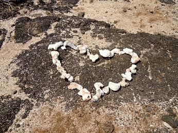 Makapuu Heiau Healing Pool_Love