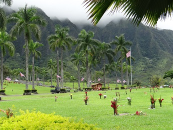 Hawaii_1305_VOT2.jpg