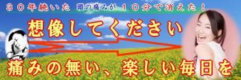top-H7.jpg