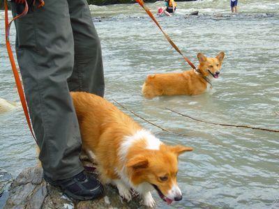 川遊び 長瀞2007