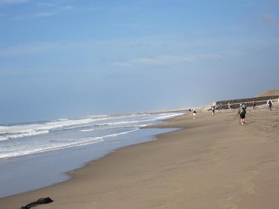 IMG_0956 ⑩ きれいな砂浜