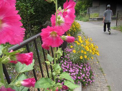 IMG_1016 ⑩ お花が歓迎