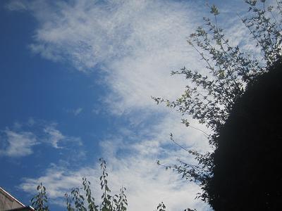 IMG_1490 ⑩ 空は秋の気配