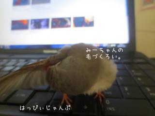 IMG_2262_convert_20130802005853.jpg
