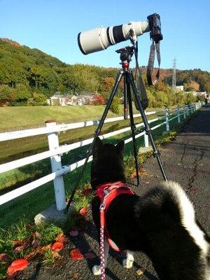 kamera1130.jpg