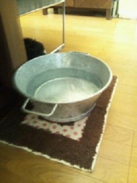 水入れ (203x270)