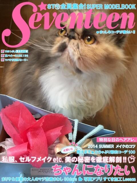 present kitty 2