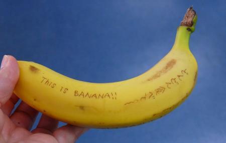 0-banana2x_20130504114628.jpg