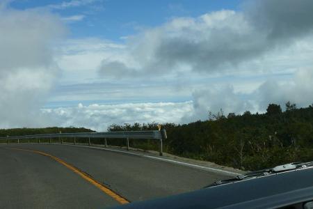 海に見える雲海
