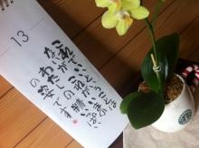 奥田 ひな blog