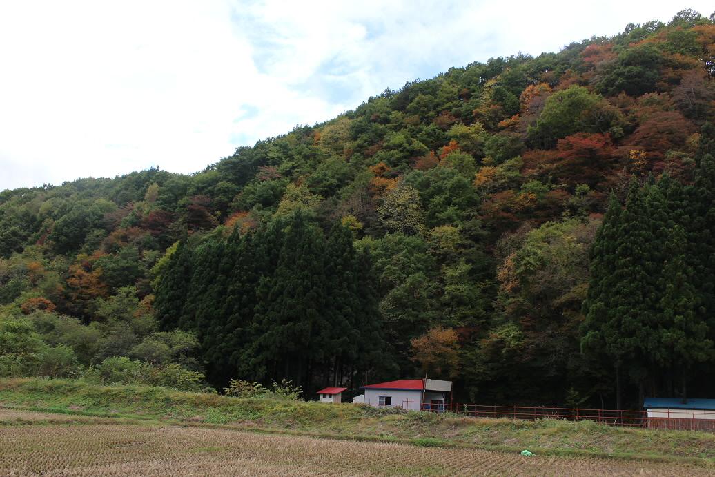 岩屋不動社15(2013.10.21)