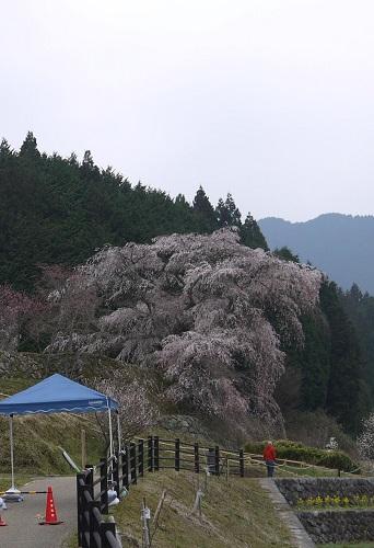 matabe-maesimasyokudou1303-099b.jpg