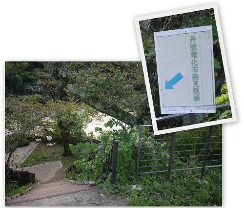 sasayamati-tann1309-014b.jpg
