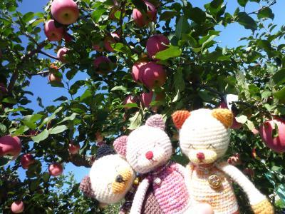 山形バスツアー・りんご狩り