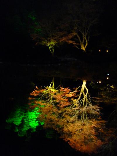 松島・円通院ライトアップ