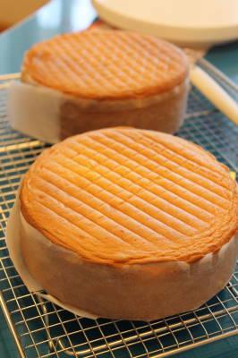 ショートケーキ5・24