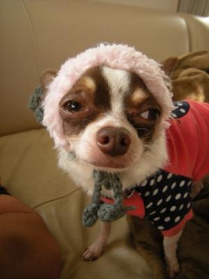 ピンクの帽子2