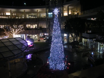 横浜ららぽイルミ2014-1