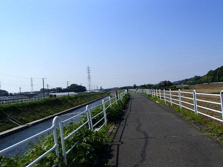 P5060005.jpg