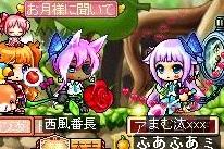 Maple131026_190417.jpg