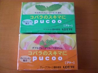 pucoo4.jpg