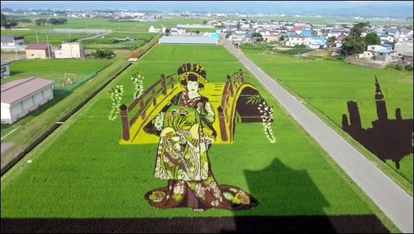 2013年田んぼアート