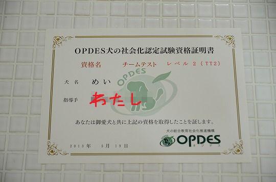 DSC_1075_20130606110403.jpg