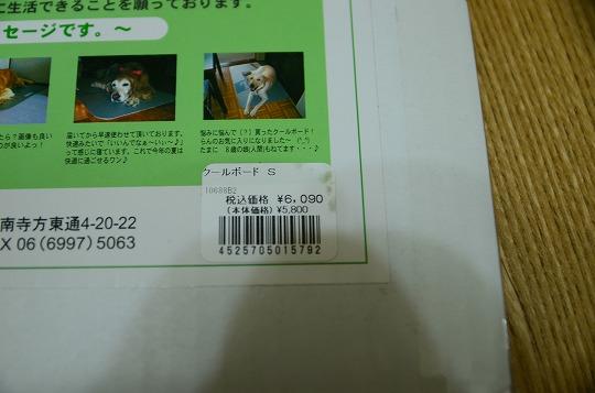 DSC_6242_20130722133321.jpg