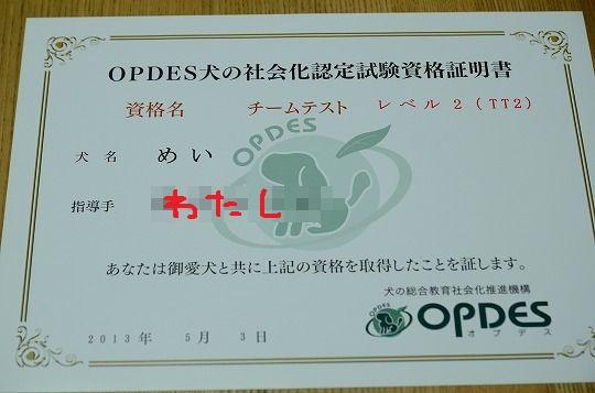 DSC_9701.jpg