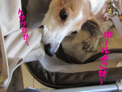 eikyou4.jpg