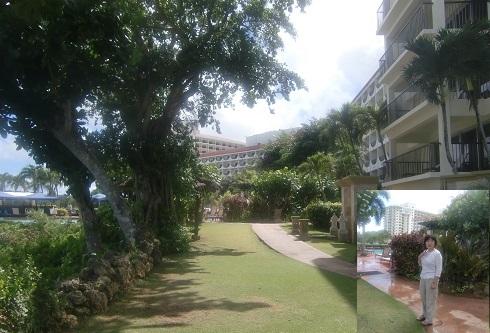 3 ヒルトンホテルの庭