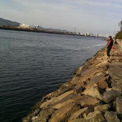 1月25日運河